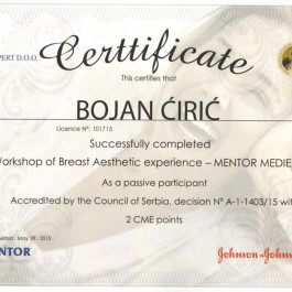1-IV-Workshop-Breast-Aesthetic-experience-Mentor-2015-1024x739