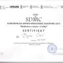SDMC konferencija sroske med dijaspore 2015