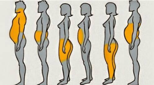 pozicija masti u telu